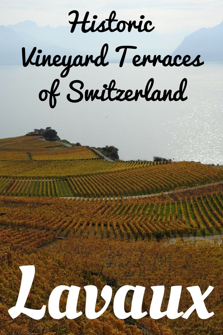Switzerland is known for the breathtaking landscapes and one amongst them is the UNESCO World Heritage Site of Lavaux Vineyard Region. With over 30 km of hiking trails and stunning views of Lake Geneva and the Alps, Lavaux is a must visit on your trip to Switzerland.