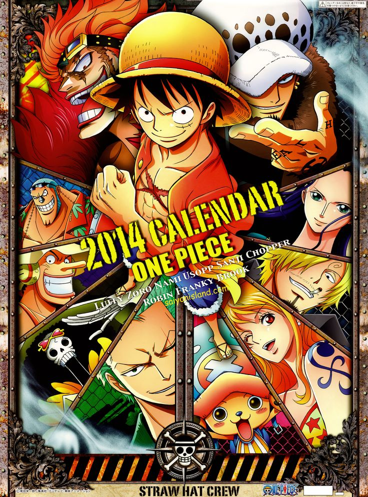 One Piece Calendario 2014 - Akiba-Kei