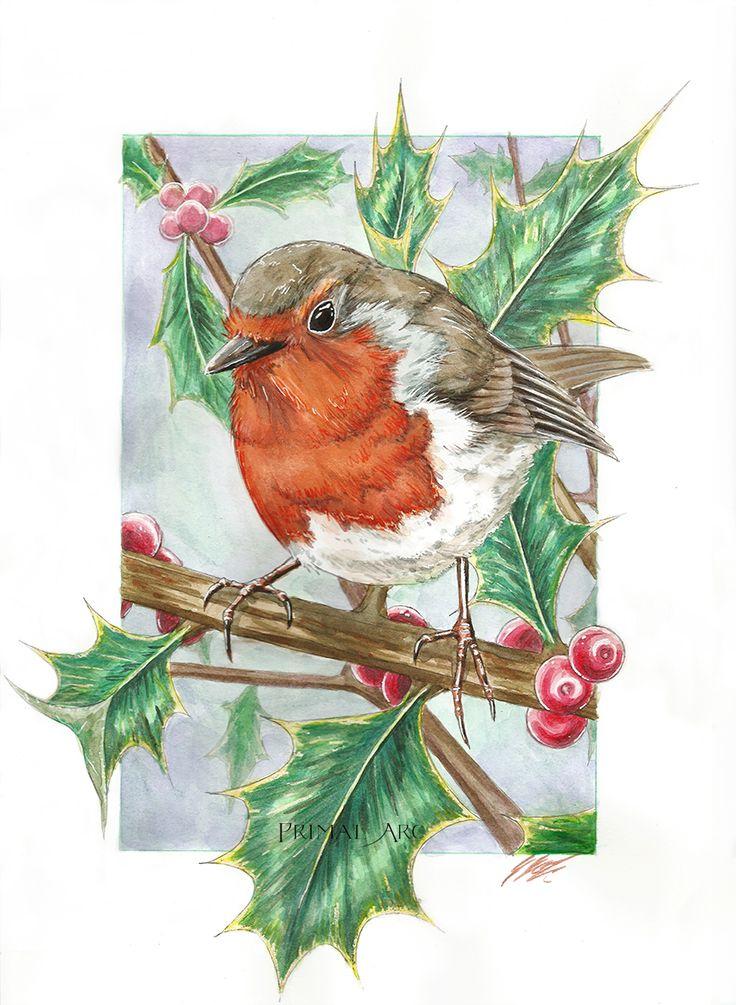 'European Robin in Holly', watercolour. www.primalarc.com