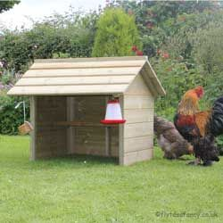 Spectacular The Chicken Shelter Small