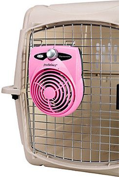 dog crate fan...Pet Accessories - This would be amazing for summer time and keeping your dog cool. //  Ooo, yes!!  :D  Our crate is more open than this one, but, still fans are great!  We should get her one.  Maybe a bigger one for at home, and then something like this for travel.  :D