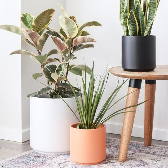 Indoor Planter Ceramic Plant Pot 15 12 Etsy In 2020 Large Flower Pots Indoor Planters Plant Decor Indoor