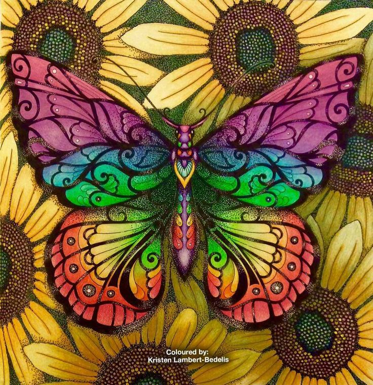 Butterfly Magic From Am Quite Proud Of The Sunflower Background As Its Most Complex Ive Drawn And Coloured So Far Used Pencils A Uniball Fine