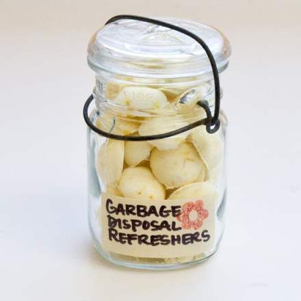 Insanely Clever DIY Garbage Disposal Refreshers  This will Slash your cleaning product bill in half!