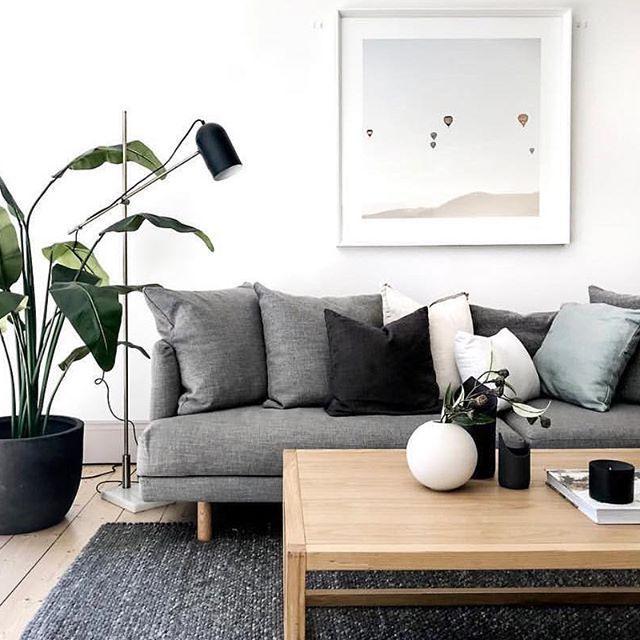 Ich mag die Pflanze und die Verwendung eines etwas dunkleren Sofas und Teppichs als Kontrast zum hellen Boden