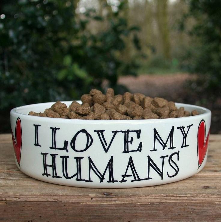 Recevez un peu d'amour de la part de vos animaux de compagnie en cette St-Valentin... pourquoi pas! :)