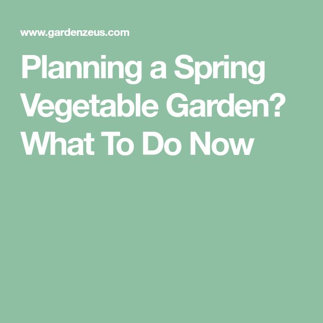 Planning a Spring Vegetable Garden? What To Do Now