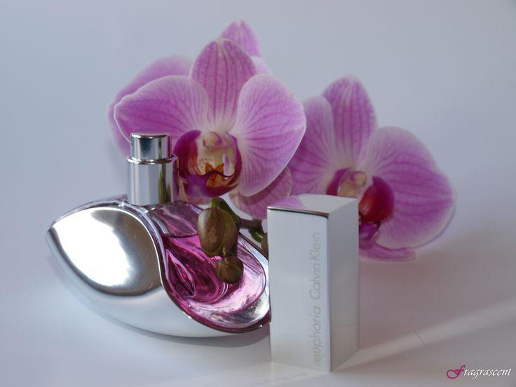 Calvin Klein Euphoria- perfume review on fragrascent.pl #calvinklein #euphoria #perfume #fragrance #review #beauty #scent #perfumy #flakon #perfume_bottle #orchid #orchidea #storczyk #pink #korek