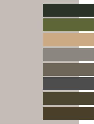 Silver Gray for Dark Autumn