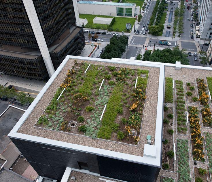Agriculture urbaine: en Allemagne, 1/4 des 110 millions de m2 de toitures d'immeubles pourrait être utilisé pour la culture d'herbes et de légumes. Du coups, 28 millions de tonnes de CO2 pourraient être absorbés par ces plantes, soit 80% du CO2 produit pr les industries allemandes (chiffres 2014).