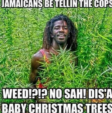 Jamaicans be like