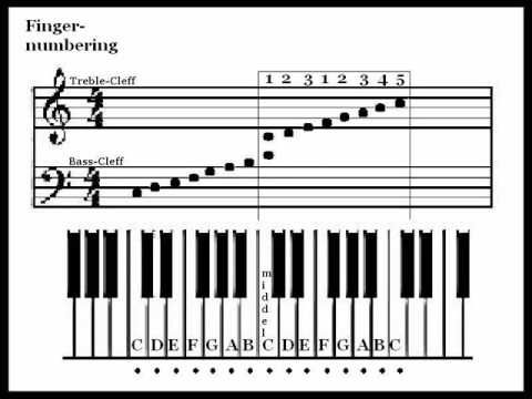Don't know how to read music? No worries! Check out this brief video to learn how to read sheet music.