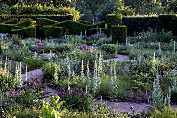 Attraversato da un sentiero sinuoso, il giardino delle piante spontanee in un'immagine scattata a giugno. I fiori viola sono Trifolium rubens e Stachys officinalis. Le erbe verde-grigio sono Verbascum