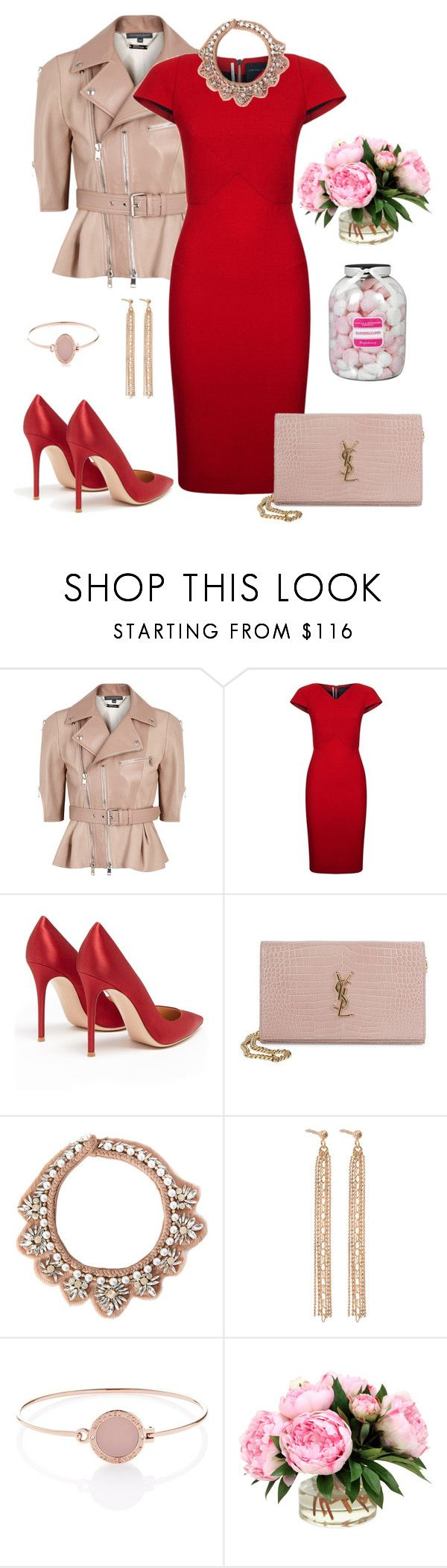 """""""Untitled #456"""" by elenarudometov ❤ liked on Polyvore featuring Alexander McQueen, Roland Mouret, Gianvito Rossi, Yves Saint Laurent, Mignonne Gavigan, Ginette NY, Michael Kors and Farhi by Nicole Farhi"""