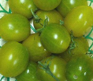 Green Grape Tomato Seeds + FREE Bonus 6 Variety Seed Pack - a $30 Value!