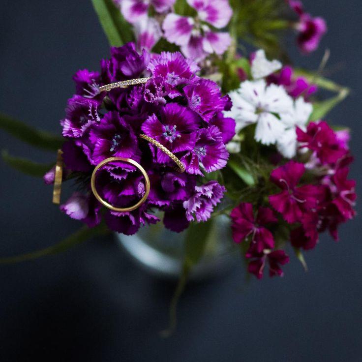 Spot 4 golden beauties #hvisk #jewelry #gold #ring #rings #flowers #flower #purple #pink #hvite #spring #summer #stilllife #natural #light #photography #stillleben