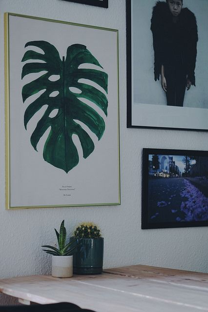 Photo by DitteBlog  Monstera Print & Spring Time