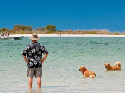 Dog Beach Park Directions Information Map Hours Sw Florida Beaches Pinterest And