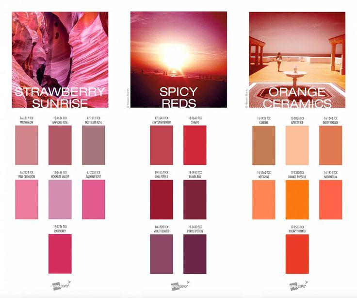 Best Colore Pantone Dell Anno Images On Pinterest Color
