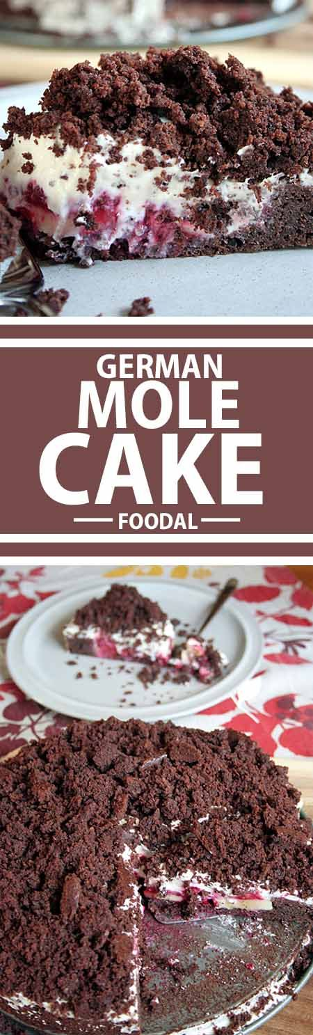 "This German Mole Cake will have you ""digging"" for more. Chocolate, vanilla whipped cream, and fresh fruit makes this the perfect treat when you need that special something. Get the recipe now on Foodal! http://foodal.com/recipes/desserts/this-german-mole-cake-will-have-you-digging-for-more/"