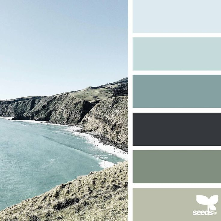 today's inspiration image for { color view } is by @amermyla ... thank you, Myla, for another fantastic #SeedsColor image share!