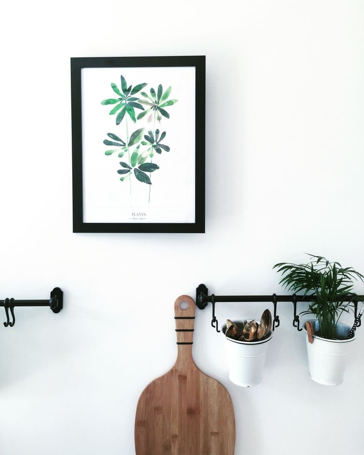 PLANTS print margohupert.pl