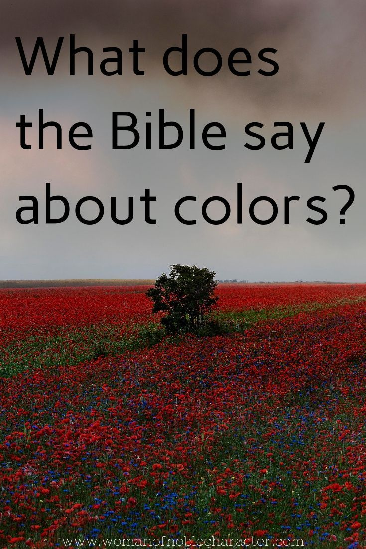Colors in the Bible: Rich with meaning and symbolism | God's