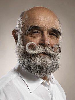 Outstanding The Beard For Hunky Men Garibaldi Beard Best Beard Styles 2017 Short Hairstyles Gunalazisus