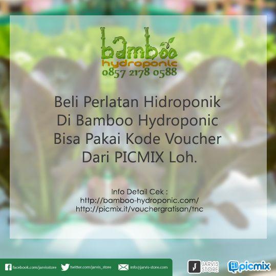 Ikut melestarikan lingkungan makin asik dengan hidroponik. Belanja sekarang juga di bamboo-hydroponic.com pake voucher dari PicMix