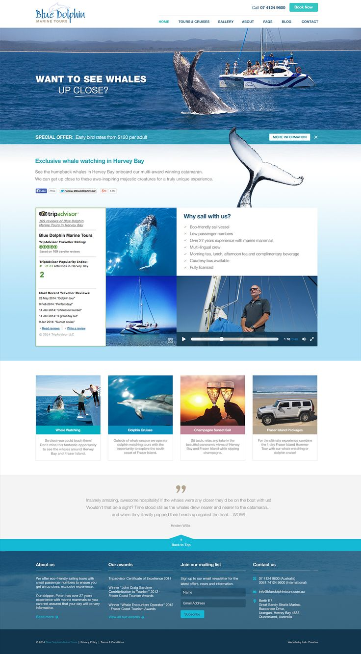 Blue Dolphin website design by ITALIC / #website