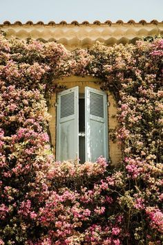 Iconic European shutters in Niece, France.