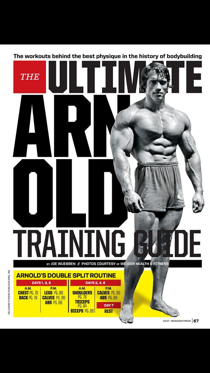 63 best arnold images on pinterest bodybuilding fit motivation arnold traing guide malvernweather Images