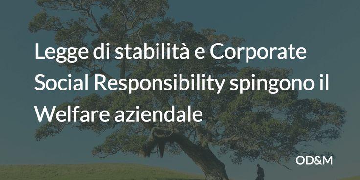La legge di Stabilità ha contribuito ad accrescere l'interesse delle aziende nei confronti del Welfare aziendale. Prendersi cura dei propri dipendenti e aumentare la produttività tra i principali obiettivi aziendali, ma prevale lo scetticismo tra i lavoratori