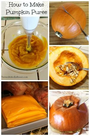 It is easier to cut the pumpkin in half if you cut it crosswise instead of from the top to bottom.