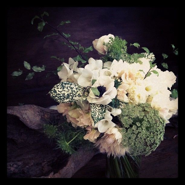 #bridal #bouquet #weddings  #photoshoot #photooftheday #love