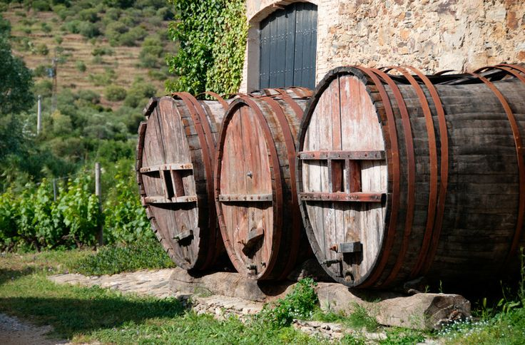Wine Barrels by Sebastian Kruk on 500px