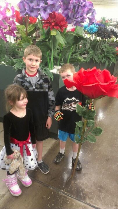 giant flower props  hobby lobby