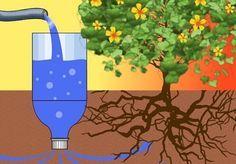 Четыре способа полива огорода — 6 соток