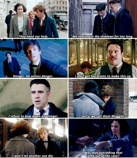 Fantastic Beasts and Where To Find Them - You're the guy with the case full of monsters, huh?
