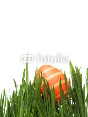 Osterei im Gras