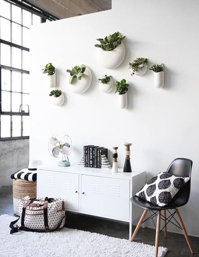 10 Things to Hang on the Wall That Aren't Frames: Plants