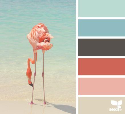 Flamingo hues - Color Palette - Paint Inspiration- Paint Colors- Paint Palette- Color- Design Inspiration