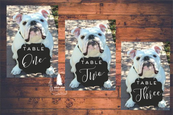 PRINTABLE Wedding table numbers Pet table numbers Pet sign