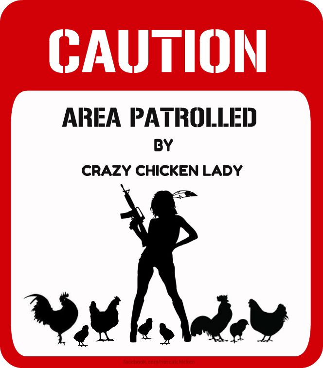 CAUTION - Area patrolled by a Crazy Chicken Lady!