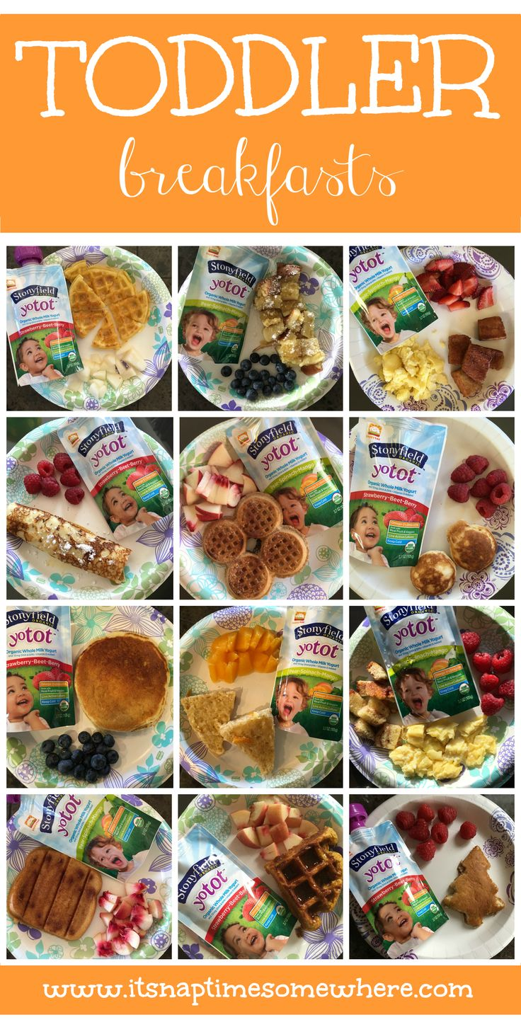Breakfast, lunch & dinner ideas. 36 different toddler meals to help anyone looking for meal ideas for their kiddos. Enjoy!