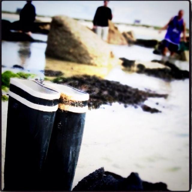 Jour de grandes marées en Bretagne