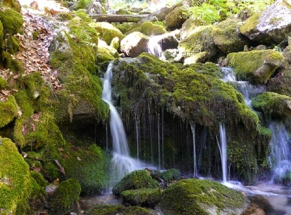 Beauty of nature in the Mavrovo national park