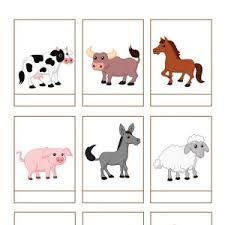 Výsledok vyhľadávania obrázkov pre dopyt kreslené obrázky lesných zvierat