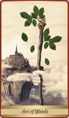 Ace Of Wands: Spirituality: Remember that your mind and body are more closely linked then you tend to consider. One affects the other, without fail. This card can indicate a new spiritual influence coming into your life. Think about your spiritual role models. If you don't have one, find one. There is always help available, if you are open to it.Source:/Lotus Tarot/psychic-revelation: meaning./ Learning Tarot
