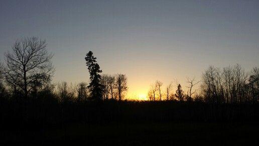 Sunset Blvd...  ○°●°○°● By: ebas